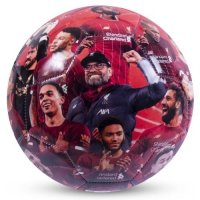 Liverpool FC Premier League Champions Photo Football